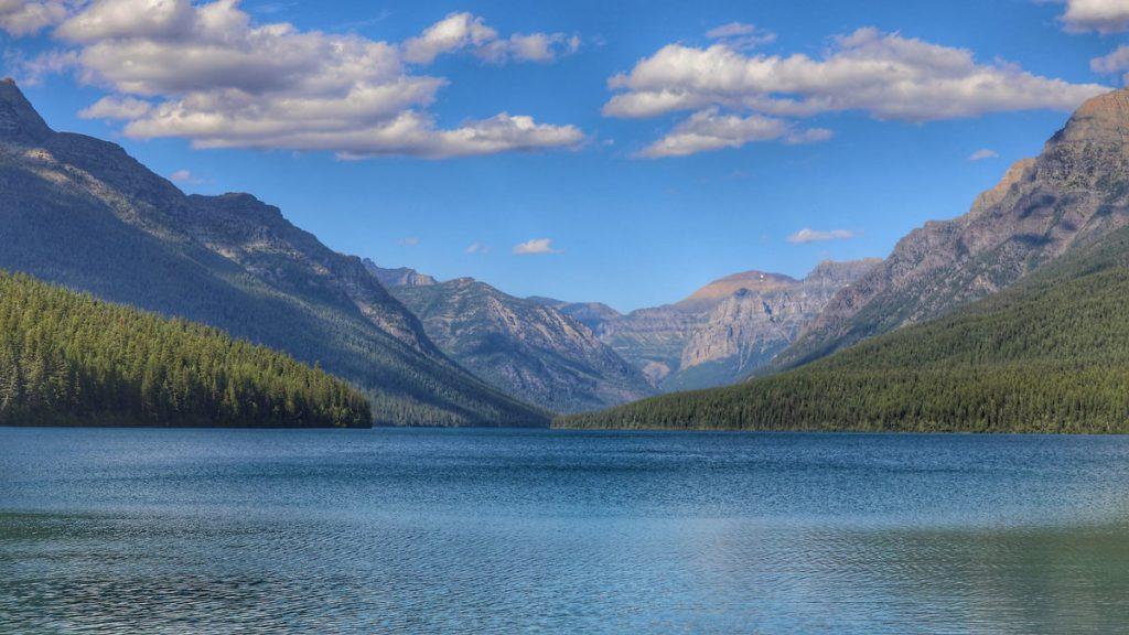 Bowman-Lake