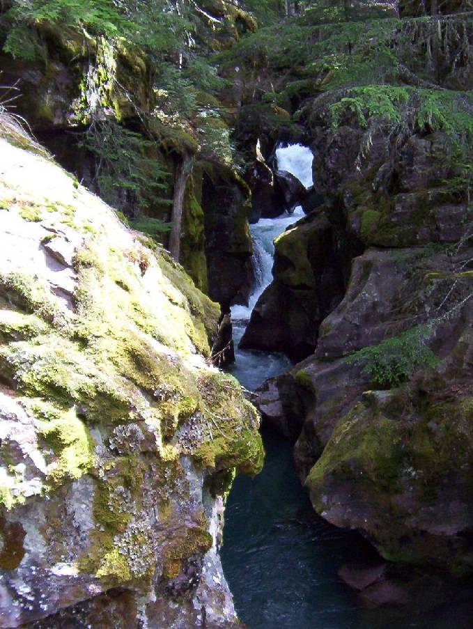 Glacier National Park Day Hike Short Hikes Smoky Bear