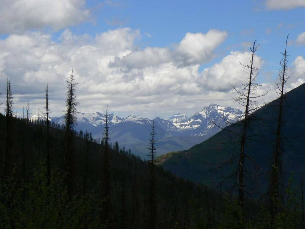 McGuinis-Creek-Trail