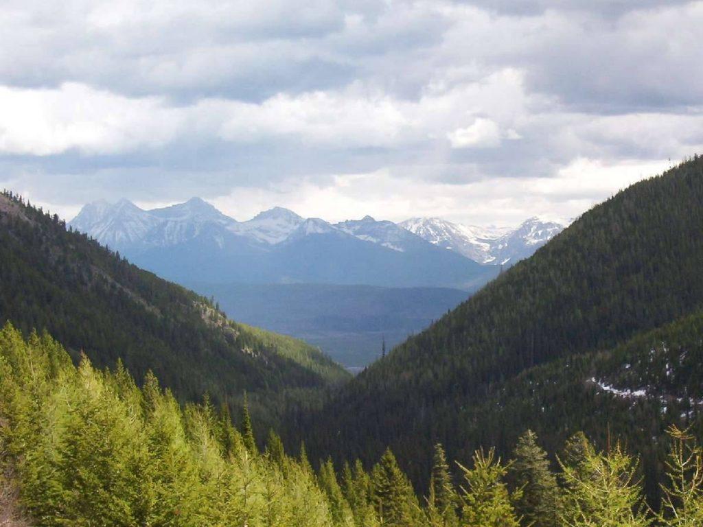 Moran-Creek-Trail