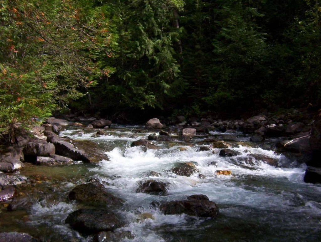 Trail-Creek2